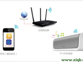 【详细图解】TP-Link 瀑布1无线音箱使用方法-iOS版